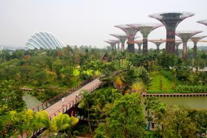 gardens-by-the-bay-singapore-attraction