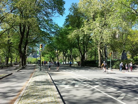central-park-road