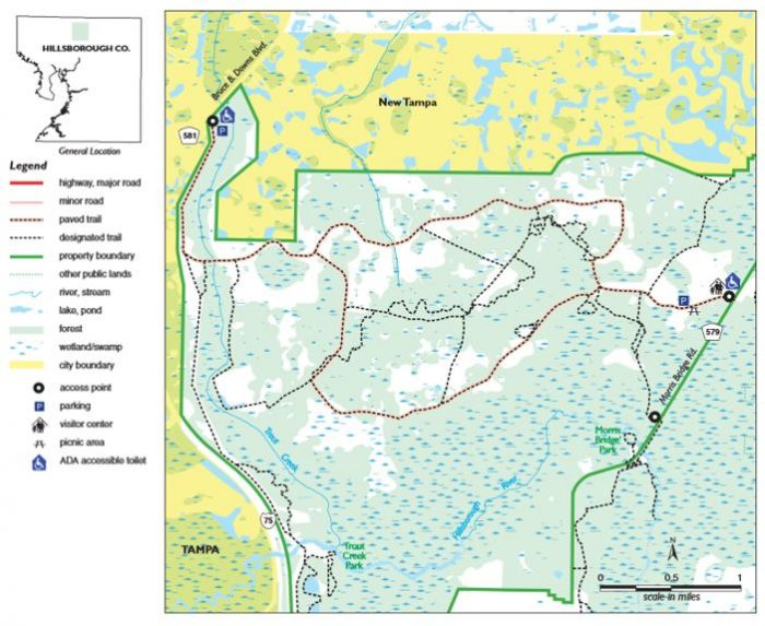 flatwoods-park-trail