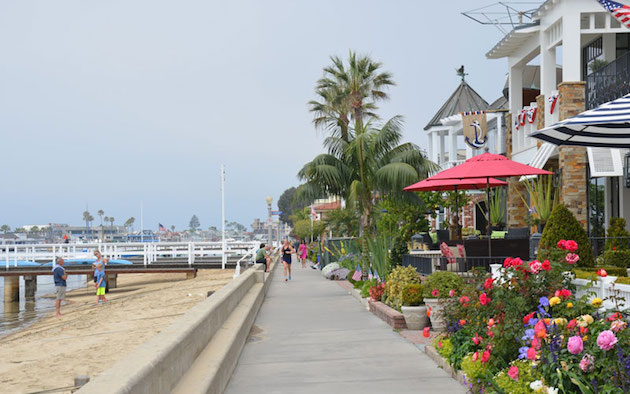 balboa island tour great runs