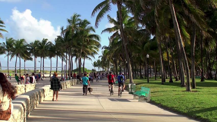 Miami Beach Great Runs