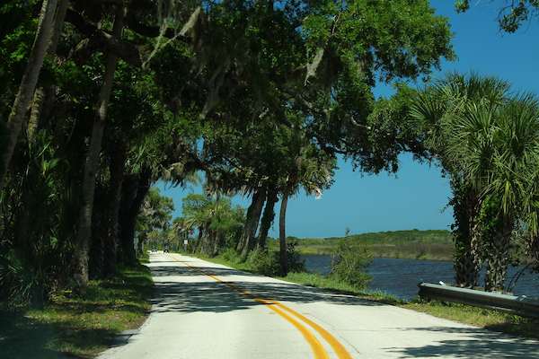 Ormond Scenic Loop Best Sections For